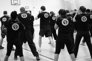 krav maga seminars and gradings